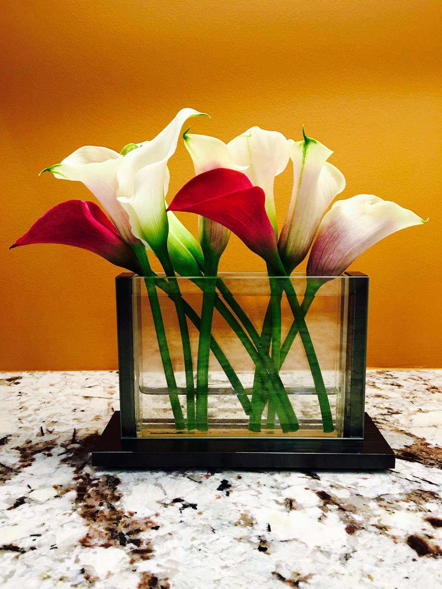 Stems Vases